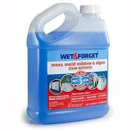 wet forget moss mould lichen algae remover  litre