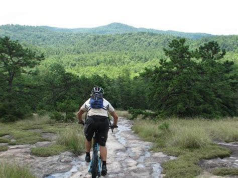 14 asheville experiences better than any gift you can wrap