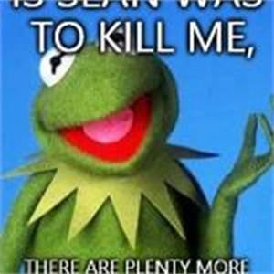 Kermit the Frog Meme Meme Generator - Imgflip