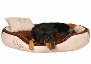 carrelage design 187 tapis pour grand chien moderne design