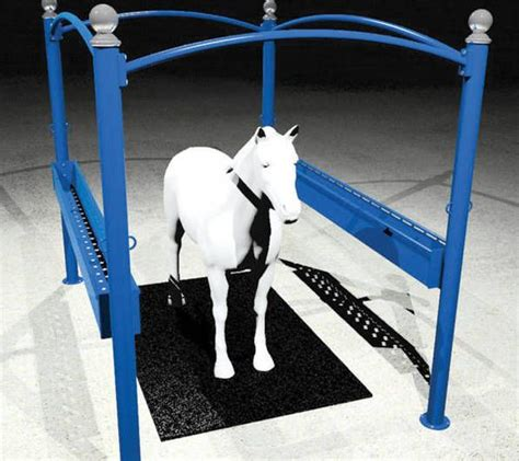 horse wash bay accessories horse grooming systems
