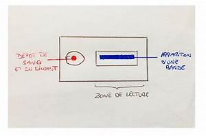 Brevet 2018   Le Corrig U00e9 De L U0026 39  U00e9preuve De Sciences  Svt Et