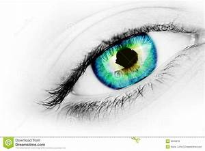 Vibrant Eye Stock Photo  Image Of Contact  Multicoloured