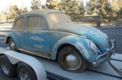 Barn Bug by 17 Best Images About For The Of Vw Bugs On