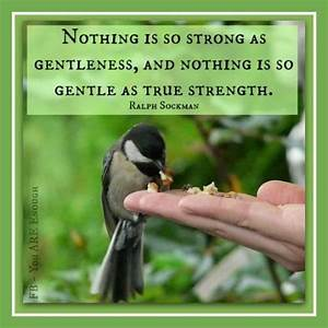 #Gentleness #Strength | There is great strength in ...