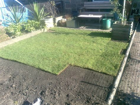 grass seed lawn repair lawn preparation for seeding and turfing lawns for you