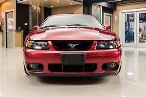 2003 Ford Mustang SVT Cobra for sale #99077 | MCG