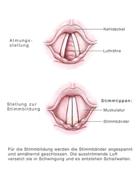 zungengrundhyperplasie symptome