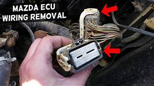 How To Disconnect Engine Computer Wires Ecu Wires On Mazda
