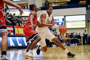 Men's basketball falls to Princeton on the road, sits two ...