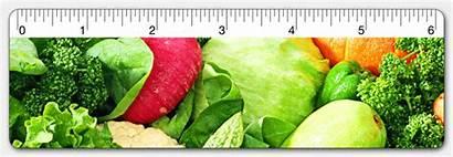 Vegetables Ruler Lenticular Animated Gifs Lettuce 3d