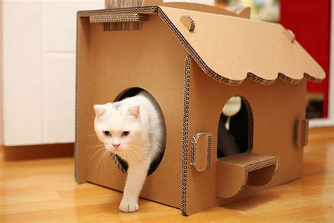 The Cat House by 10 Great Ideas Of Indoor Cat House