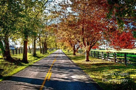 The beauty of the Kentucky Back roads (With images