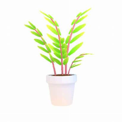 Transparent Plant Giphy
