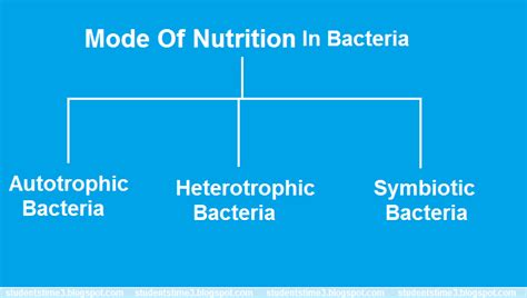 students time mode of nutrition in bacteria