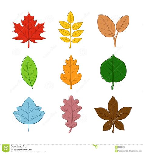 autumn leaf hand drawing stock vector image