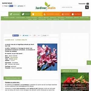 Laurier Rose Entretien : laurier pearltrees ~ Melissatoandfro.com Idées de Décoration