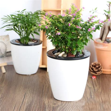 big list   watering planters  stylish