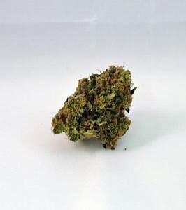 Nebula II CBD (Paradise Seeds) - Zativo
