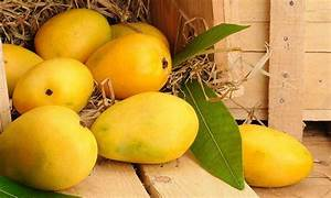 health benefits and benefits of mangoes with chaunsa mango medium plus 3pcs momobud