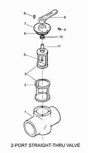 Pentair Ortega Valve Parts  Parts Diagram