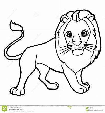 Lion Cartoon Coloring Vector Dreamstime Illustration Cheerful