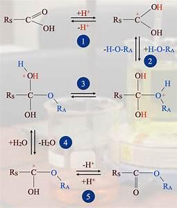 Esterbildung  S U00e4urekatalysiert