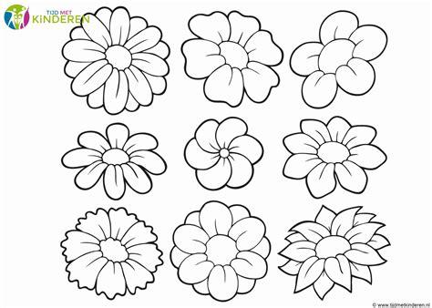 Kleurplaat Eenvoudig by Kleurplaat Rozen Ge 239 Nspireerd Bloemen Kleurplaten