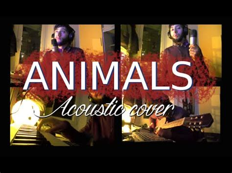 martin garrix animals acoustic cover youtube