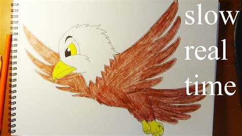 draw cute eagle real time como dibujar aguila