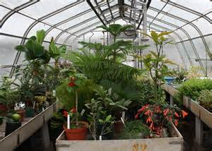berkshire botanical garden caring for plants in a