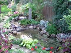 Water Garden Koi 172 Related Keywords Suggestions Koi 172 Long Tail Keywords