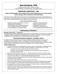 cfo curriculum vitae sle financial executive cfo resume