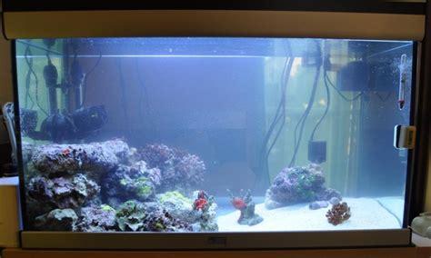 eau d aquarium trouble aquarium eau de mer trouble