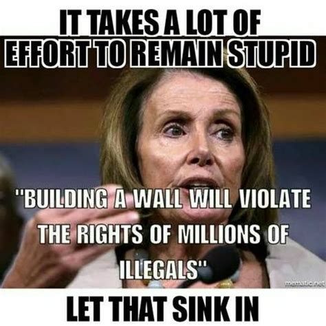 Pelosi Memes - fact check did nancy pelosi say building a wall will violate the rights of millions of illegals