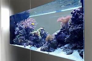 Aquarium Als Raumteiler : raumteiler b ro ~ Michelbontemps.com Haus und Dekorationen