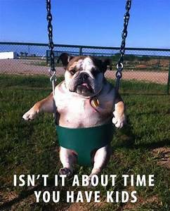 perfect caption | Funny Animals | Pinterest | Happenings ...
