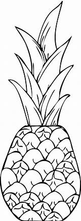 Coloring Pineapple Clipart Clip Pages Printable Drawing Line Drawings Apple Hawaii Pine Clipartpanda Colouring Painting Clipartix Books Pattern Fruit Clipartbarn sketch template