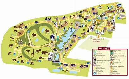 Zoo Colchester Map Maps Opening Parking Prices