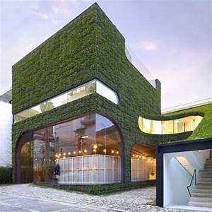 Unglaubliche vertikale Gärten und grüne Wände - 30 Ideen