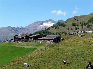 Traum Ferienwohnung Südtirol : ferienwohnung b pircher s dtirol meranerland firma ferienwohnungen pircher frau elisabeth ~ Avissmed.com Haus und Dekorationen