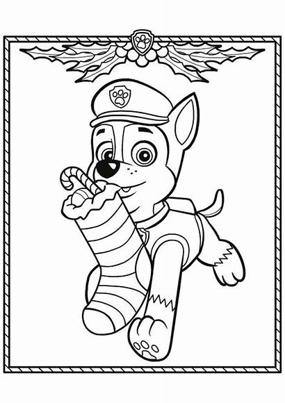 Patrol Paw Chase Coloring Pages Pow Cartoon
