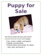 Puppy For Sale Flyer Templates by Lab 1 1 Puppy For Sale Flyer Knows These Commands Sit