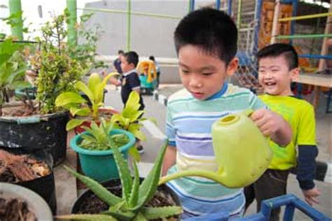 choosing a preschool in indonesia language 608 | TutorTimePreschool wateringplants