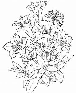 Flower Coloring Pages for Adults - Bestofcoloring.com