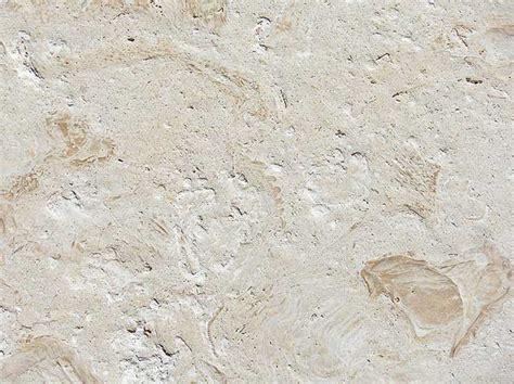 coral tile coral stone pavers interlocking coral stone pavers accurate pavers