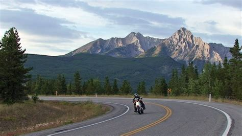 motorcycle riding elk rocky mountains travel