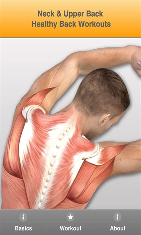 Amazon.com: Prevent Back Pain: Exercises For A Correct