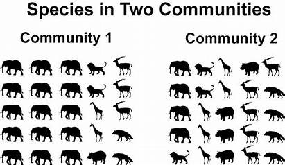 Species Richness Diversity Between Difference Abundance Example