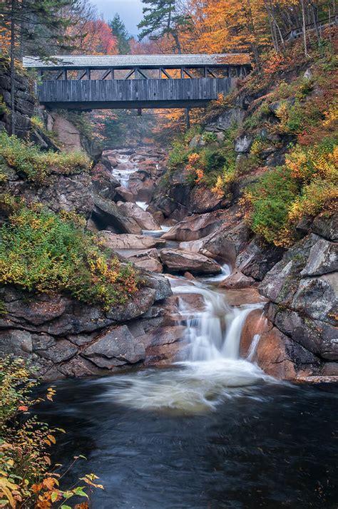 sentinal pine bridge white mountains national forest